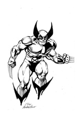 Wolverine - BW Drawing 3